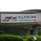 【はらぺこあおむし】エリック・カール展に行って来ました【日本との関わり】